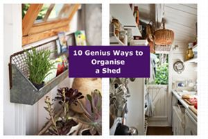 10 genius ways to organise your shed