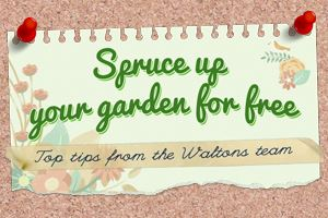 Spruce up your garden for free