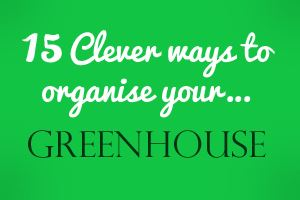 15 clever ways to organise a greenhouse