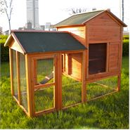 Waltons Chicken Coop 4