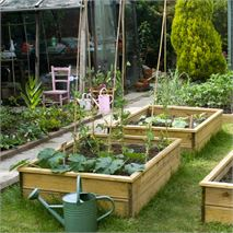 1500 x 900 x 150 Waltons Standard Wooden Raised Bed