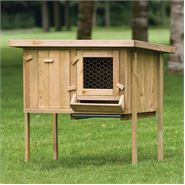 Raised Timber Rabbit Hutch