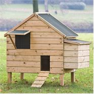Lakenvelder Timber Chicken Coop