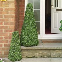 Pack of 2 Gardman 60cm Obelisk Leaf Effect Topiary