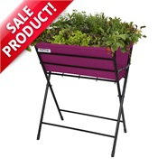 Purple VegTrug Poppy Planter