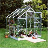 6 x 6 Halls Silver Aluminium Popular Greenhouse with Vent